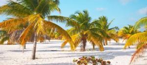 Cuba Destinations Hotels